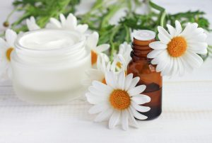 creme and daisies